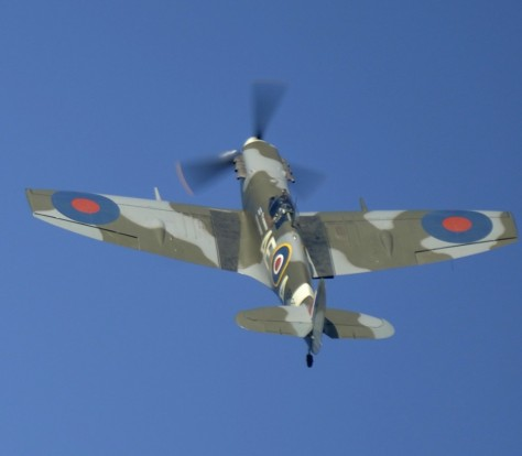 Bio-Spitfire-Mk.V.-1024x895