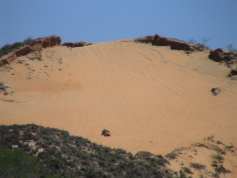 Morro do Navio em abril de 2013, agora completamente desenterrado