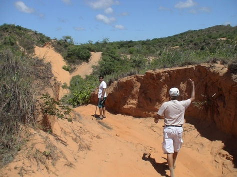 Neste ponto da trilha, a diferença no solo poderia indicar utilização de um trator para abrir este caminho em tempos passados?