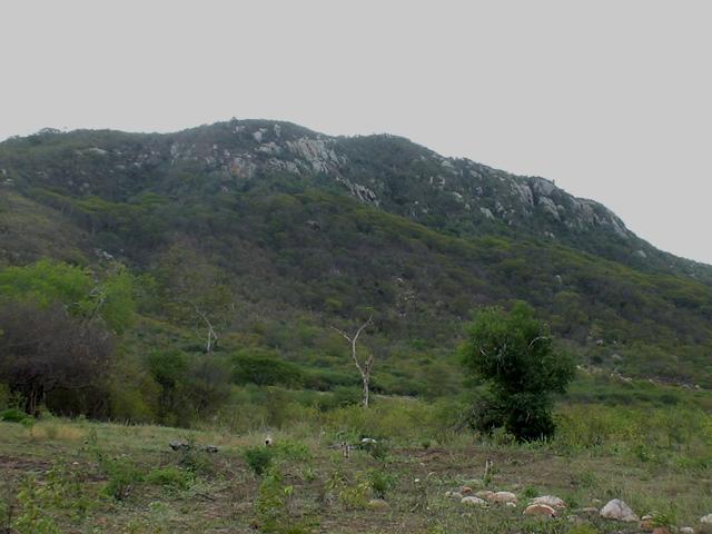 Serra Grande, local do maior combate do cangaço
