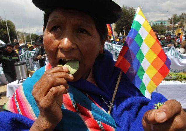 Mascar folha de coca na Bolívia é tradição cultural - Fonte - www.newsrondonia.com.br