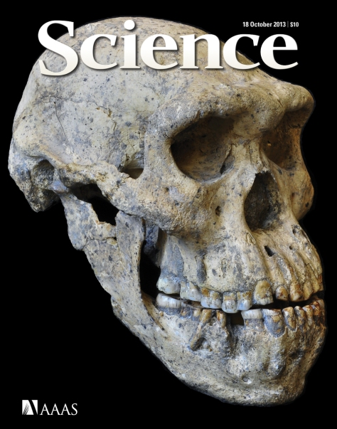 Capa da revista Science, com foto do novo crânio de Homo erectus. (Foto: © Guram Bumbiashvili/Georgian National Museum)