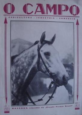 O campeão Mossoró - Fonte - http://ritaturfe.blogspot.com.br/2010_12_19_archive.html
