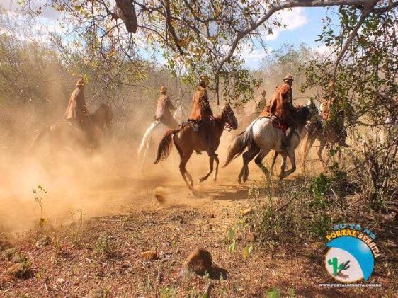 Valente vaqueiro nordestino - Fonte - http://www.portalserrita.com.br/