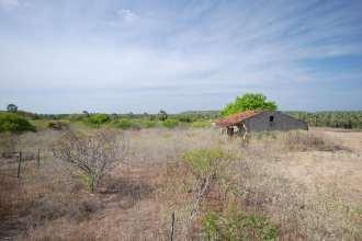 A fazenda da foto chama-se Mato Verde, também atacada por cangaceiros sob o comando de Lampião e próxima a Felipe Guerra. Foto - Solon R. A. Netto