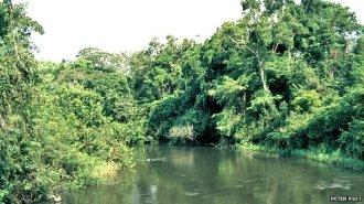 Rio Ebola, que batiza o vírus - Fonte BBC
