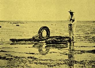 Restos de naufrágios no Atol das Rocas em 1934