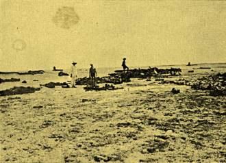 Outros restos de naufrágios fotografados em 1934