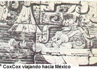 coxcox