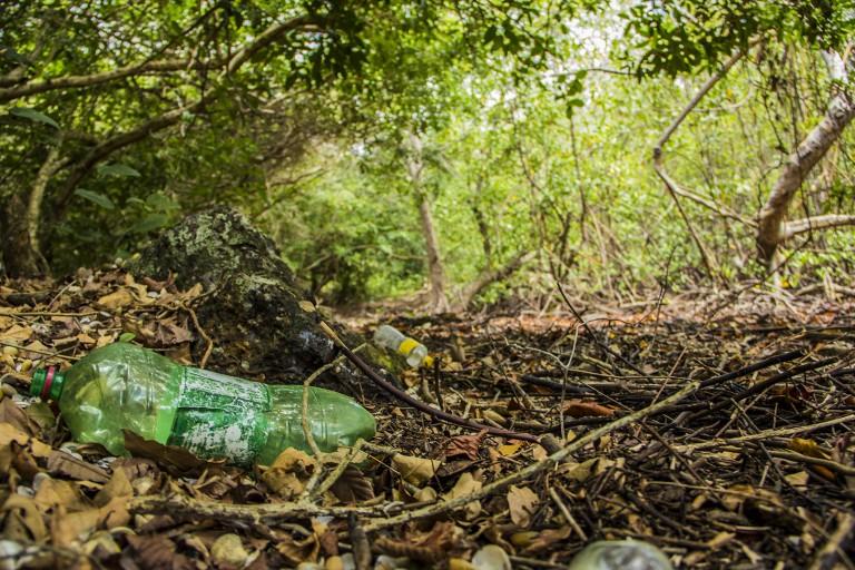Arez_poluicão-na-ilha-768x512