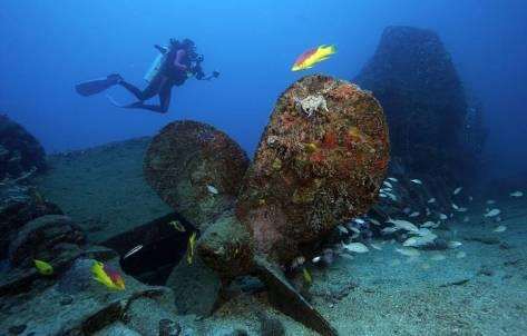mergulhar-nos-naufragios-de-olinda-pe-1