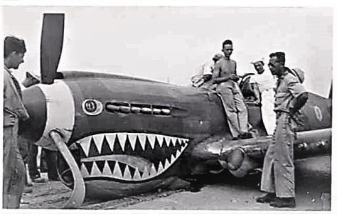 Fortaleza - P-40 Crash - Copy